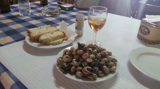 it's snail season!
