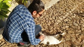 And I got to take this one, because of course he was petting the cat!