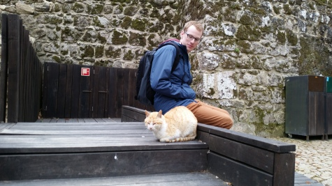 we found a cat, of course.