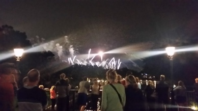 A distant view of Epcot's daily fireworks show