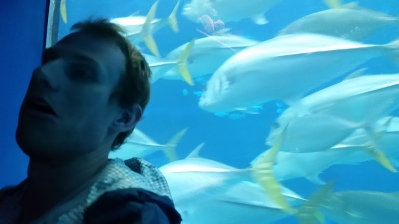 later in the day, we went to an aquarium