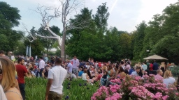 Jazz in Sculpture Garden