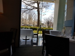 Kevin's view of the Capitol Building from lunch!