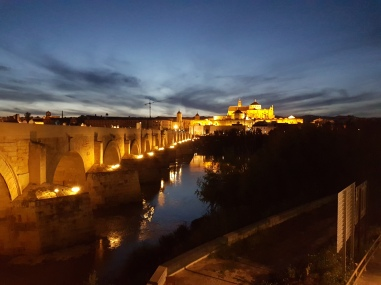 View of the Mezquita at night from the other side of the Roman bridge