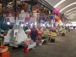 Exploring the flower market!